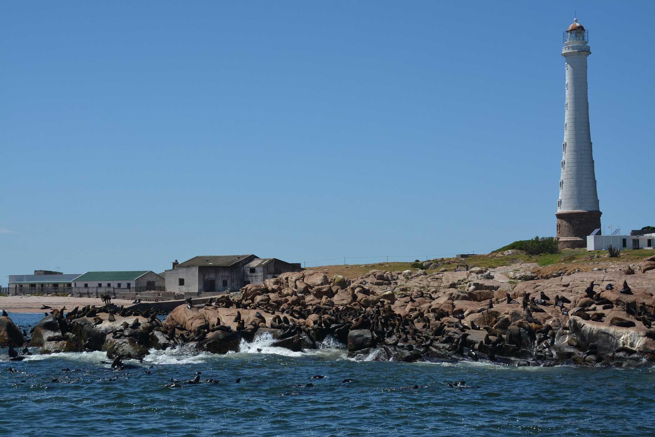 Tour de Dia Inteiro em Punta Del Este (sem almoço) - Regular