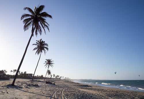 Traslado Aeroporto/Hotel/Aeroporto em Fortaleza (hotéis na Orla)+City Tour+Beach Park (sem ingresso)