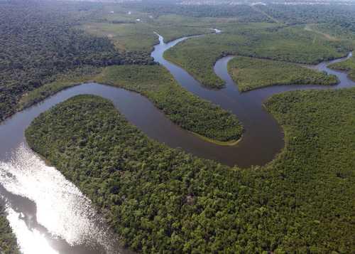 Traslado Aeroporto / Porto (Iberostar Grand Amazon) / Aeroporto - Manaus