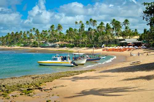 Traslado Aeroporto SSA / Praia do Forte BA / Aeroporto SSA