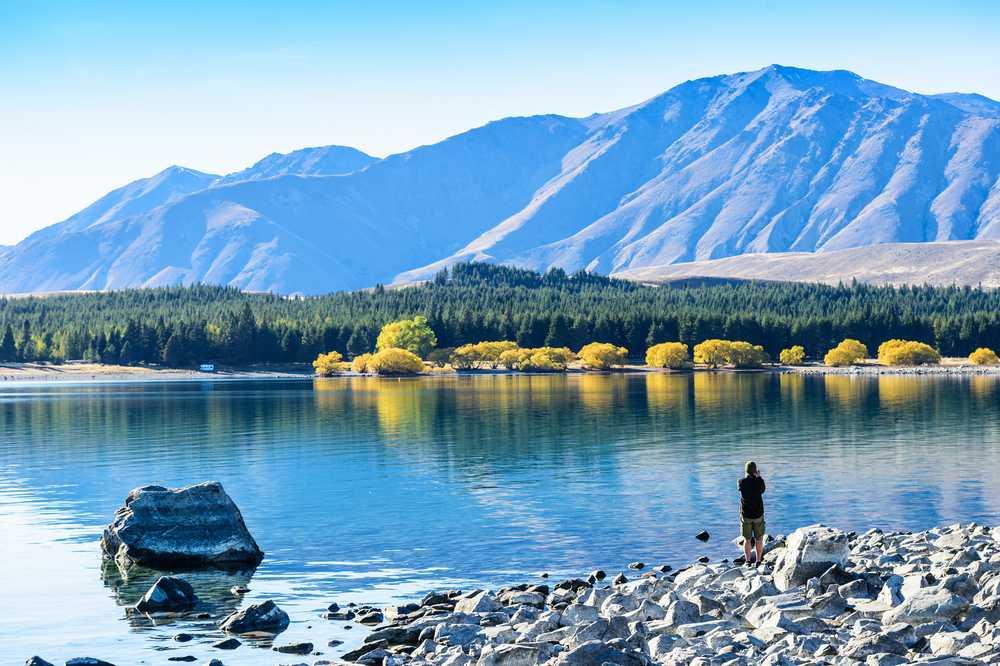 Aotearoa - NZ01 (2019-2020)