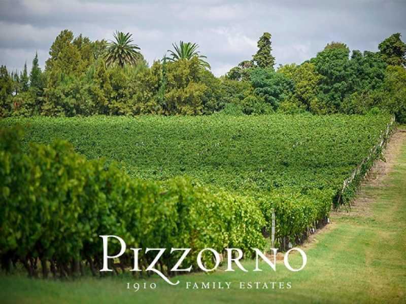 Tour Bodega Pizzorno com Degustaçao e Almoço