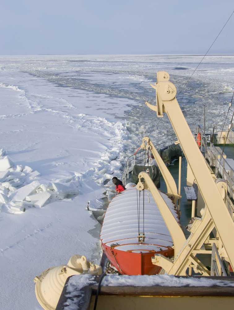 Aventura Ártica - FI15