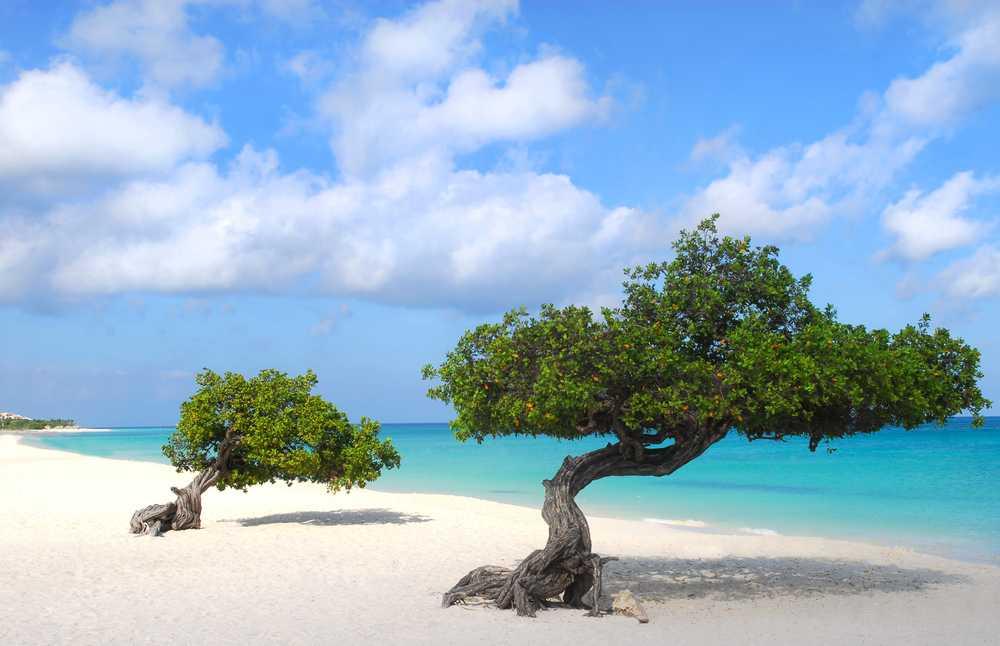 Aruba Classic - Pacote à Sua Maneira - AUA02D