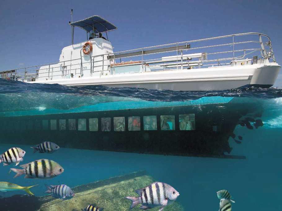 Explore o Mundo Submarino - Regular