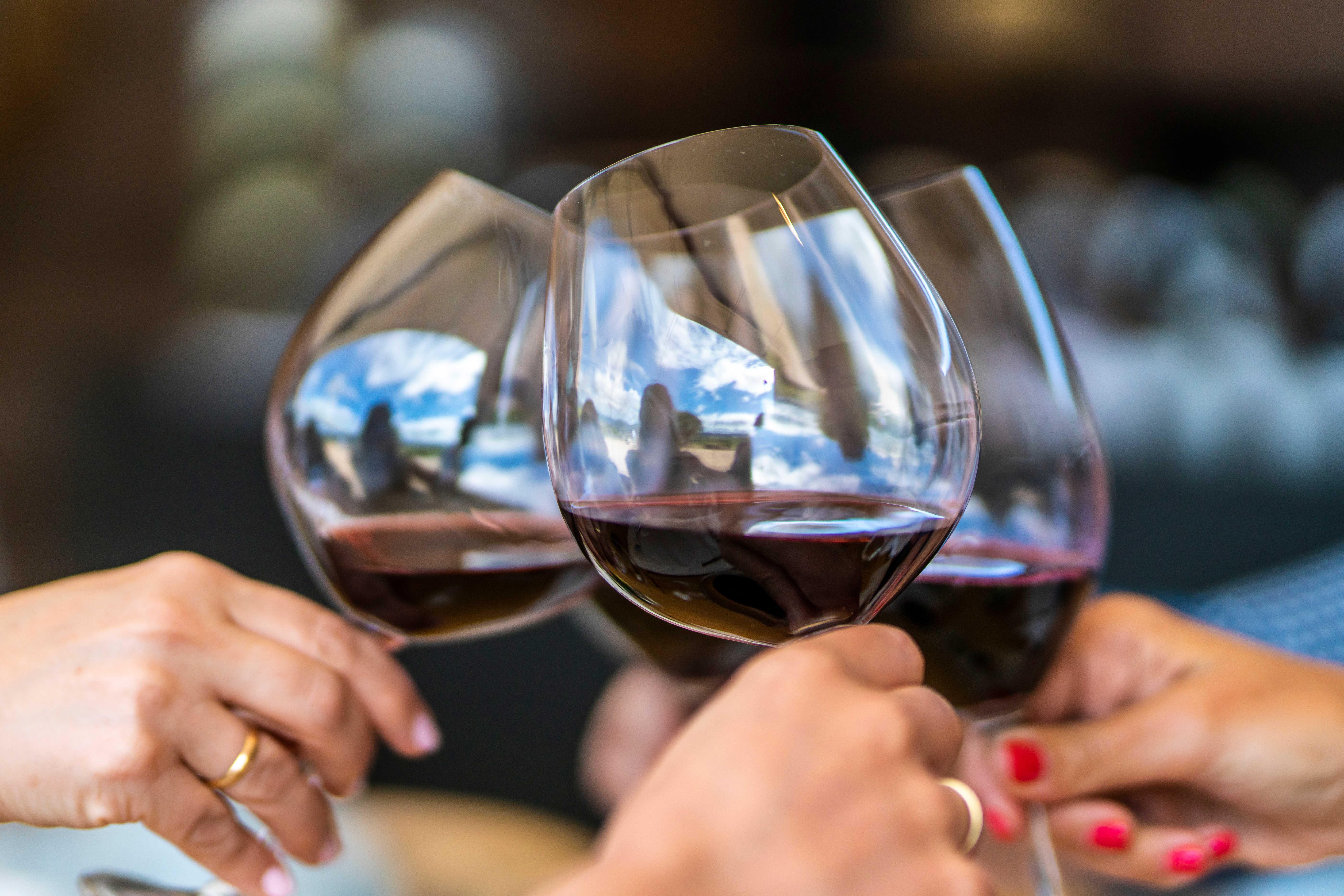 Rota do Vinho no Uruguai